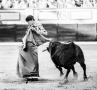 Toros, Badajoz,  Ganadería Daniel Ruiz, Saúl Jiménez Fortes