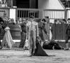 Toros, Badajoz, Feria de San juan, Ganadería Daniel Ruiz, Talavante