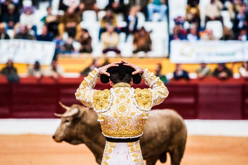 Oto_Bullfight_16