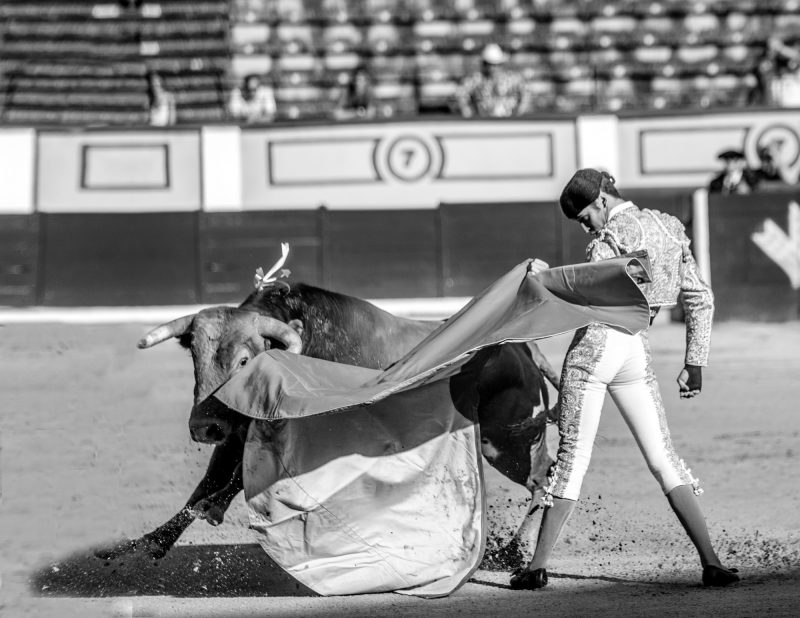 Oto_Bullfight_25